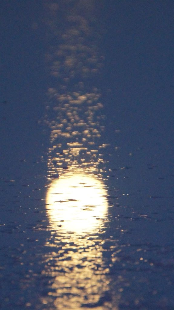moon south australia