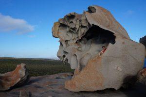 Kangaroo Island: 1 semaine de road trip