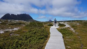 Sentier cradle mountain