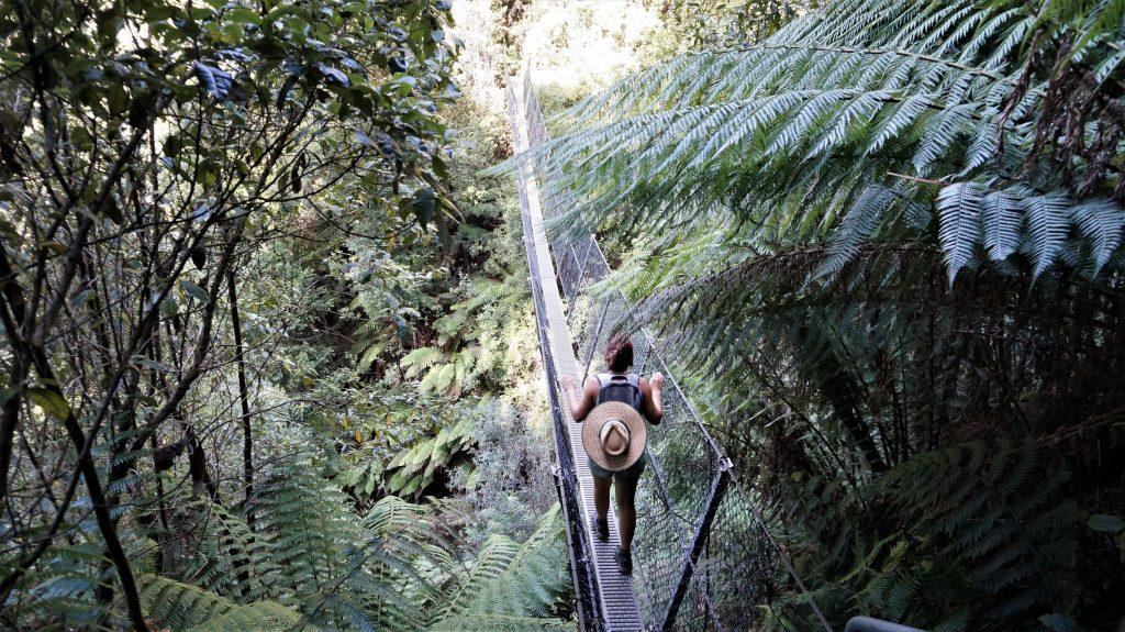 randonnée tasmanie