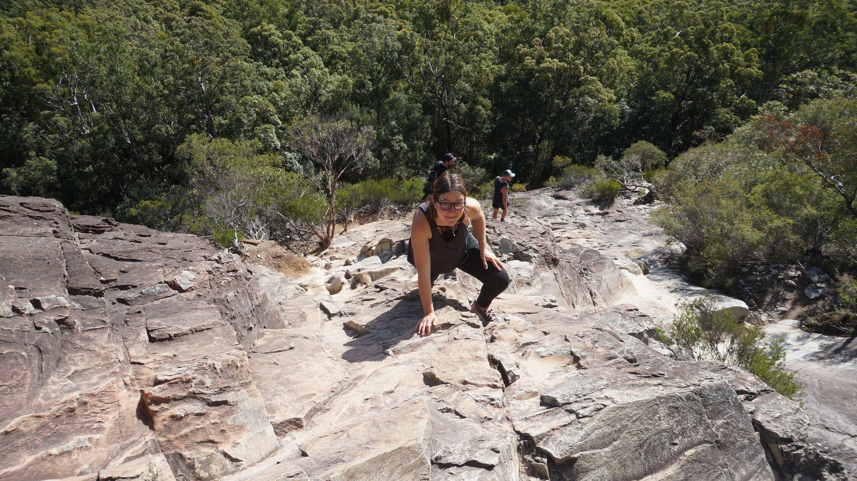 Sunshine Coast: Glass House Mountains et Noosa